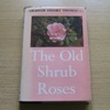 The Old Shrub Roses.